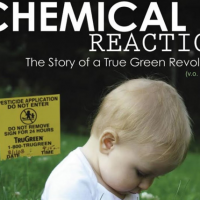 A Chemical Reaction