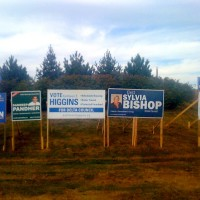 Delta Election Signs - Ladner Trunk and Highway 17